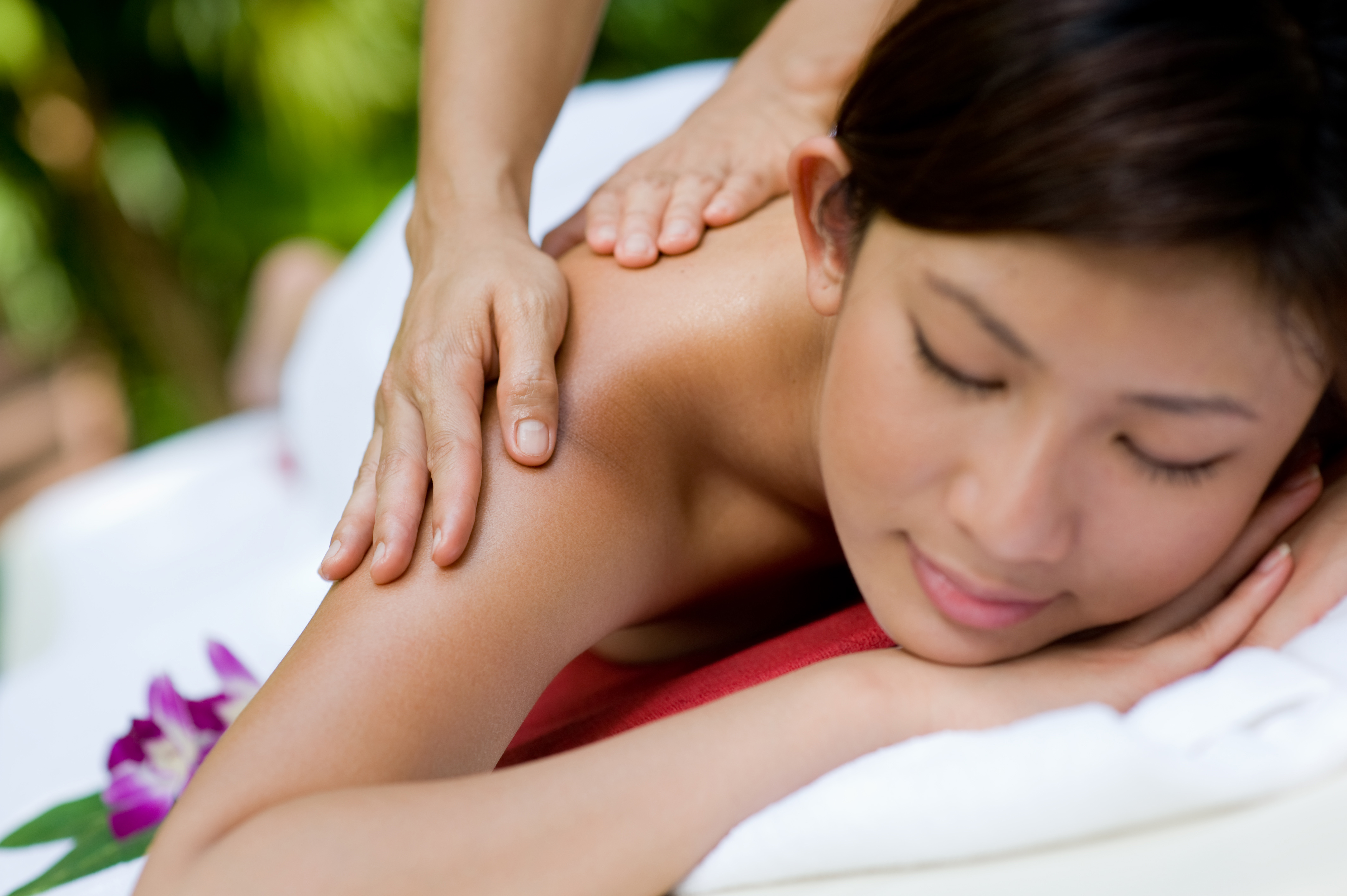 Acupuncture, cosmetology, or pet grooming