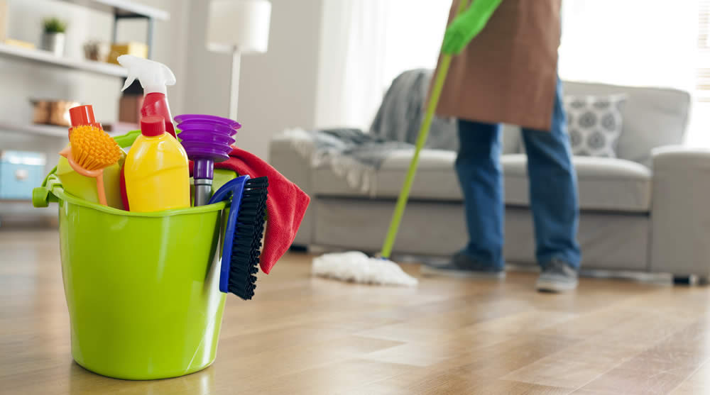 Home-Based Cleaning Business in San Francisco