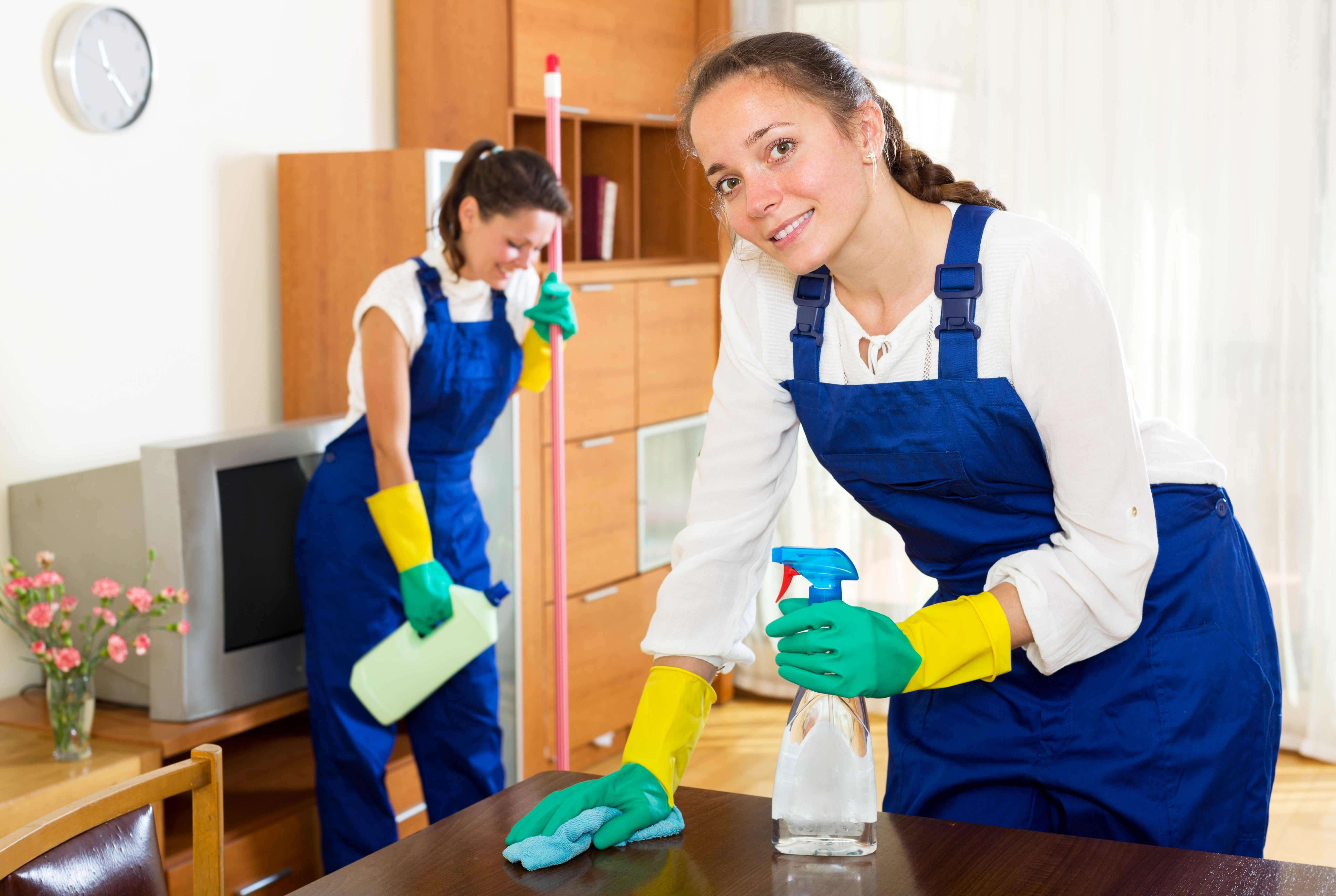 Established & Profitable House Cleaning Business