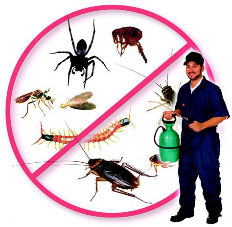 Pest Control Service, Nets $100,000, No Employees.