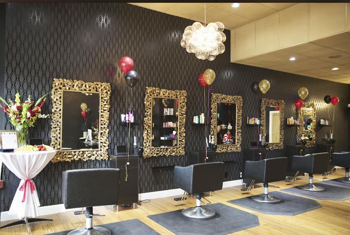 Profitable High End Hair Salon with 2 Locations